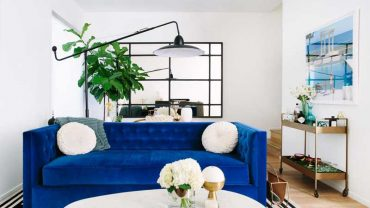 Living Room with Blue Sofa