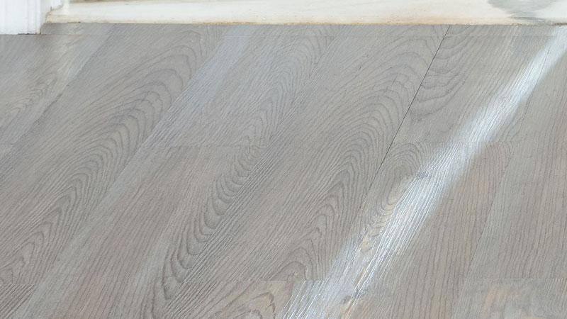 21 Silver Spruce