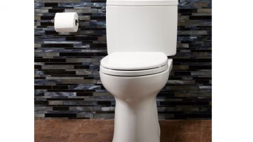 Toto Drake II Model CST454CEFG-01 Toilet Review