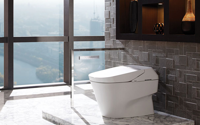 Toto Toilet Bidet Combo Neorest 700H Review