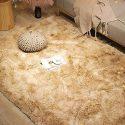 Fluffy Living Room Rugs